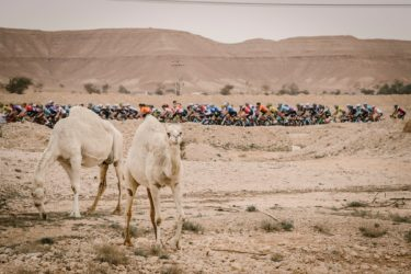【ツアー・オブ・サウジアラビア/第2ステージ】最長ステージの集団ゴールスプリントでジュリアン・トラリウーが9位