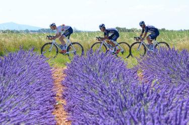 レース再開を見据えたフランスでのトレーニングキャンプに日本人選手3名が参加